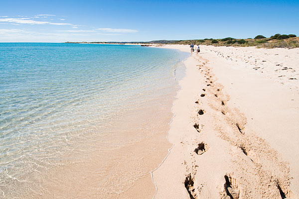 Your Guide to the Best Beaches in Australia 1