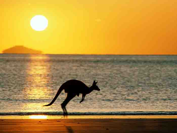 Tips for Backpacking in Australia 1