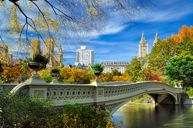 Top Attractions in New York City 1