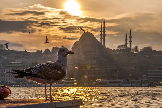 Istanbul party destination in Turkey