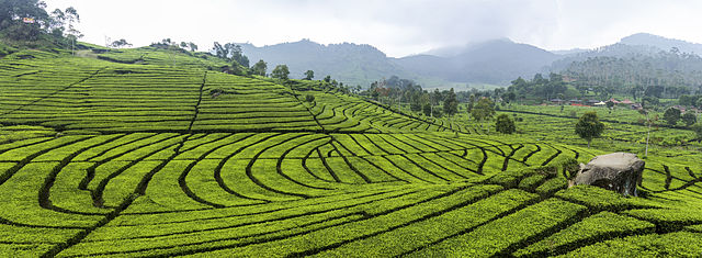What to do on a holiday in Bandung 4