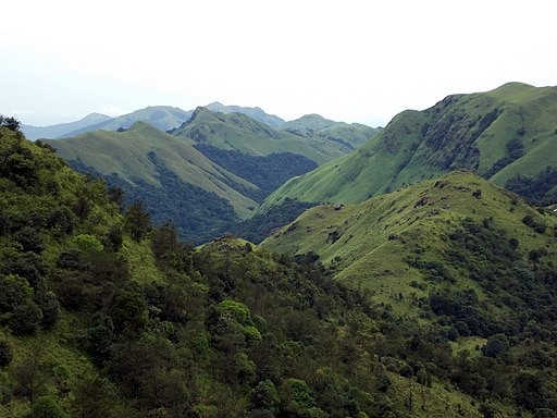 Best things to do on a trip to Coorg India 1