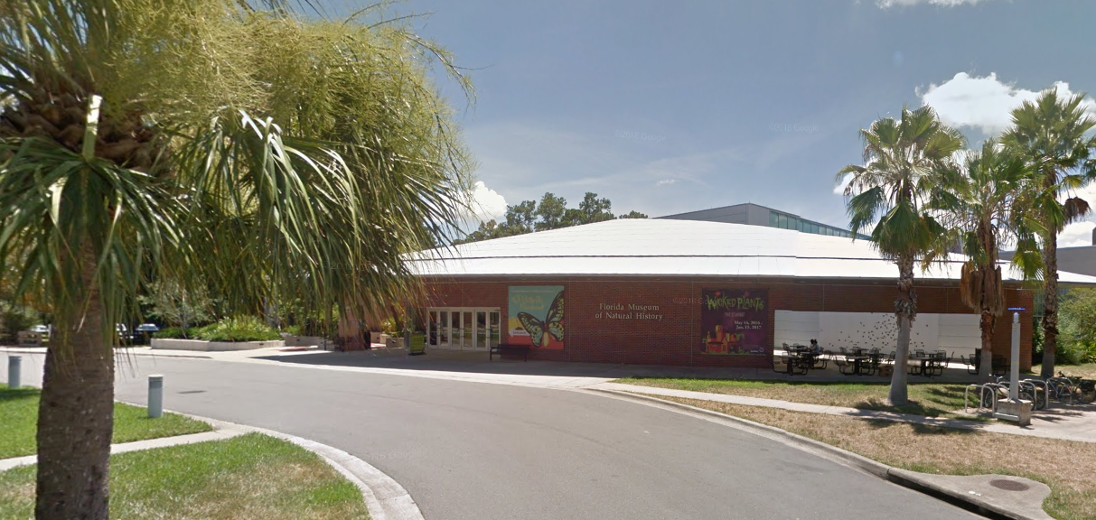 Florida Museum Of Natural History Gainesville