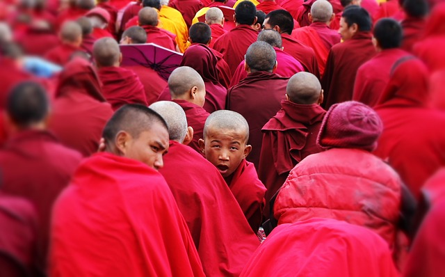 the-monks-dharamsala